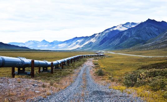 Transport nafte i gasa